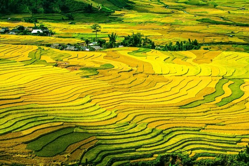 Ha Giang The Destination We Should Visit
